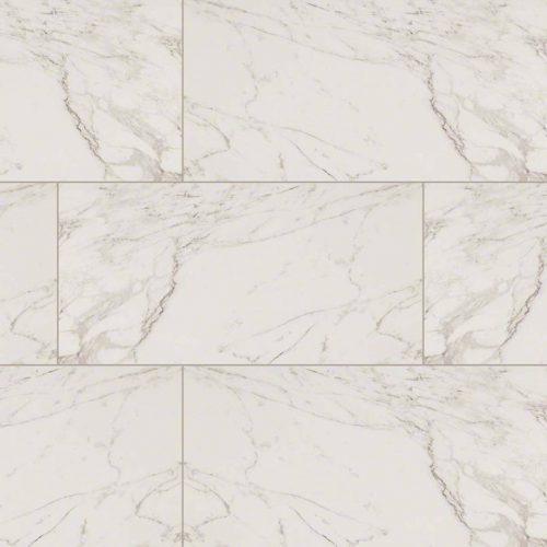 Carrara Pietra Porcelain MSI